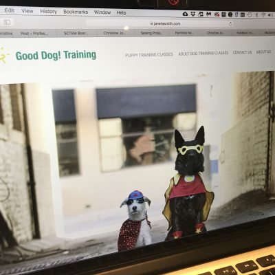 Dog training web site development